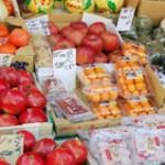 フルーツって季節を運ぶ食べ物です「くだもの」